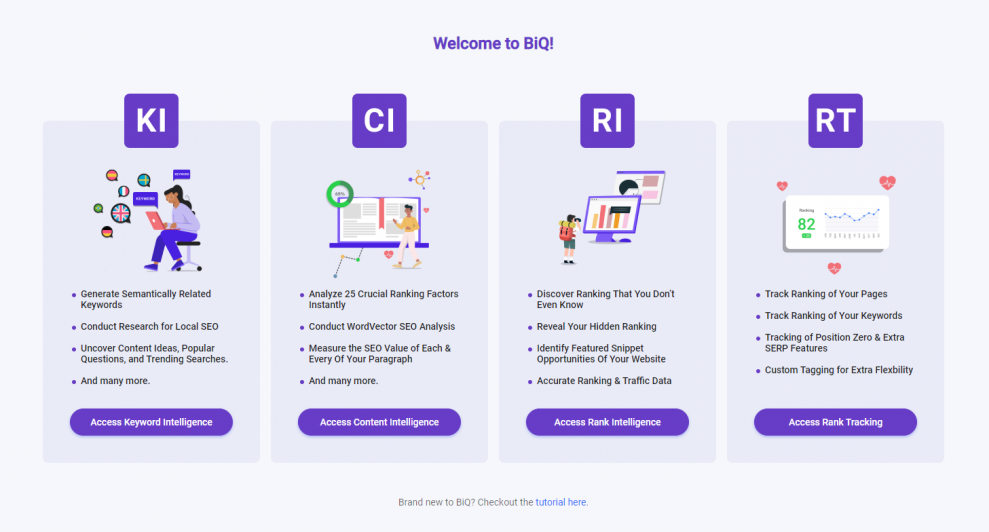 Learn how to use BiQ SEO Suite