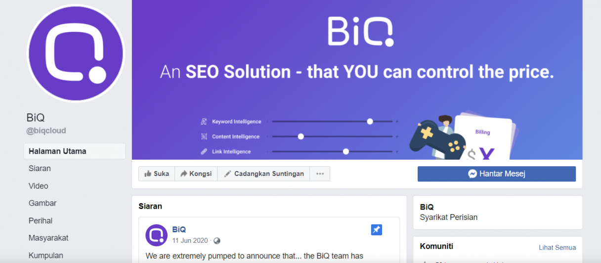 Facebook Business Page Examples BiQ