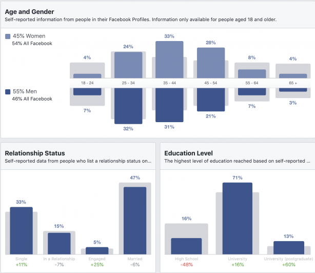 Demographics tab in Facebook audience insights tool