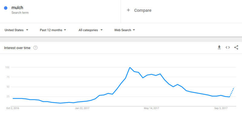 Google Search Trends for the keyword SEO