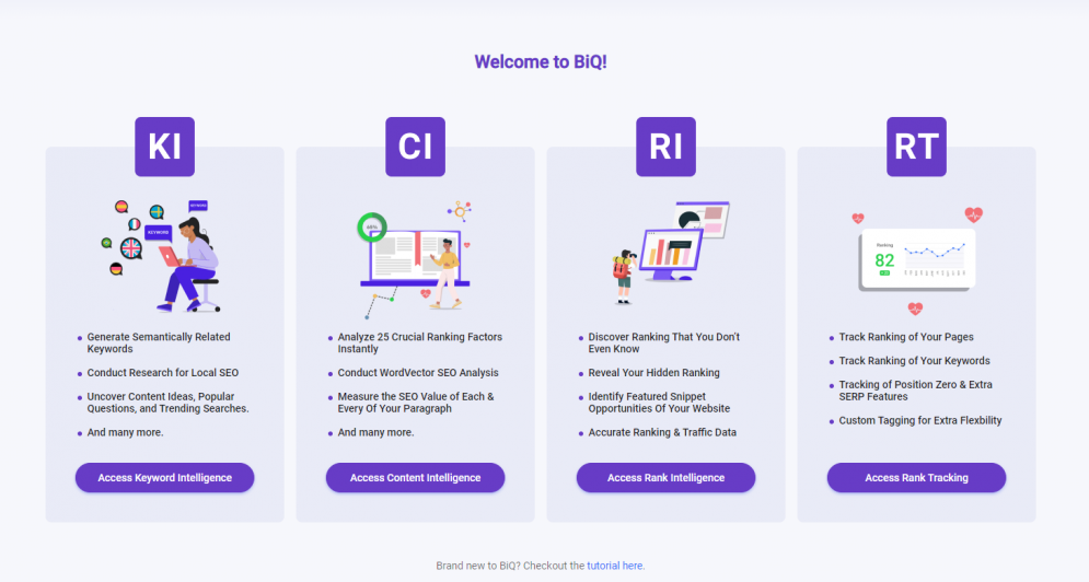 Do more than Livekeyword with BiQ SEO suite