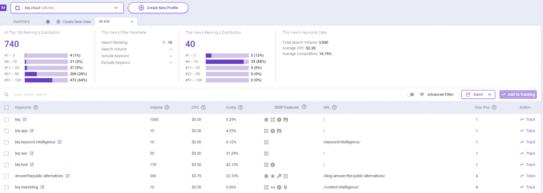 Returned results as seen on BiQ Rank Intelligence