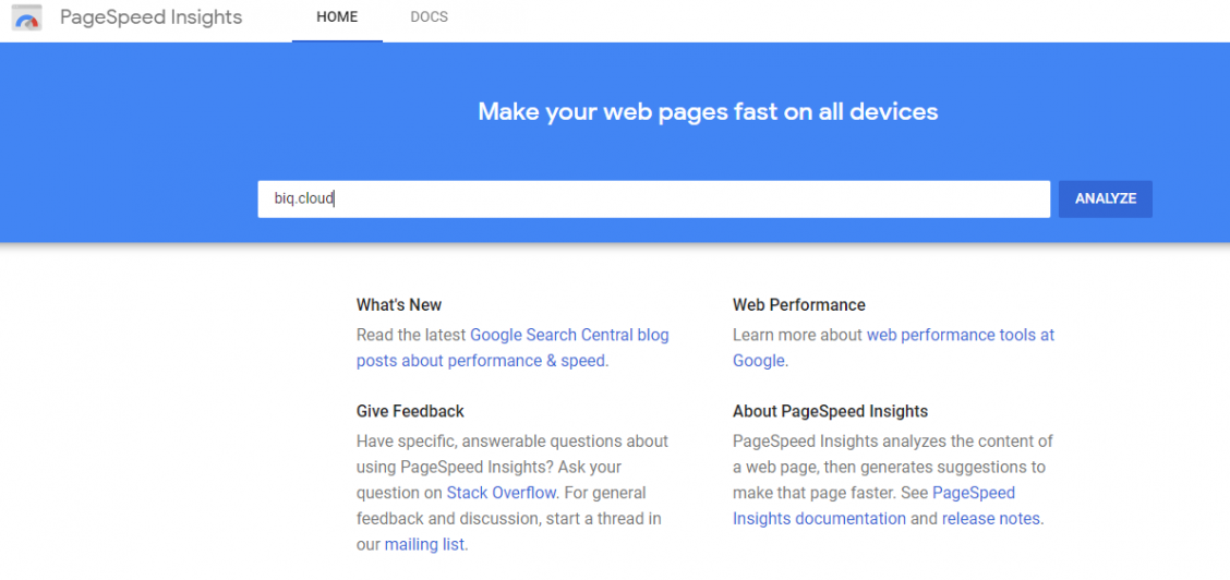 Page speed check done on Google's domain with Google PageSpeed Insights