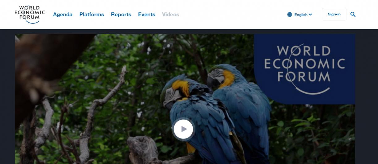 World Economic Forum's digital video trends are short yet interesting
